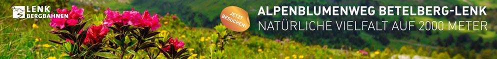 Lenk_Alpenblumenweg